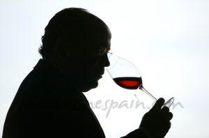 hablemos de vino magazinespain.com
